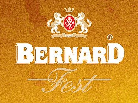 BERNARD FEST 2016